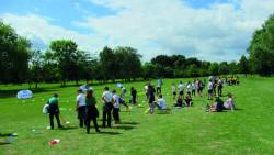 School golf coaching and festivals